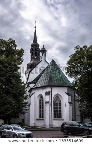 Kupola templom Tallinn hátsó katedrális szent Stock fotó © smartin69