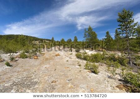 Elhagyatott réz bánya Norvégia víz fa Stock fotó © slunicko