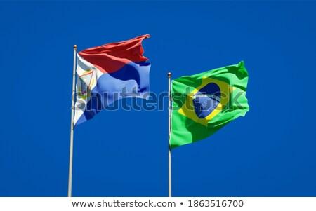 ブラジル フラグ パズル 孤立した 白 ビジネス ストックフォト © Istanbul2009