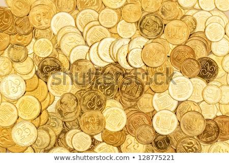 érmék Ukrajna arany pénzügy arany siker Stock fotó © vlad_star