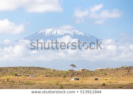 Mount Kilimanjaro berg afrika natuur sneeuw sport Stockfoto © meinzahn