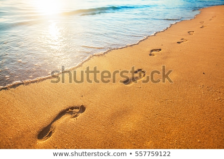 Foto stock: Pegadas · areia · pôr · do · sol · água · fundo · oceano