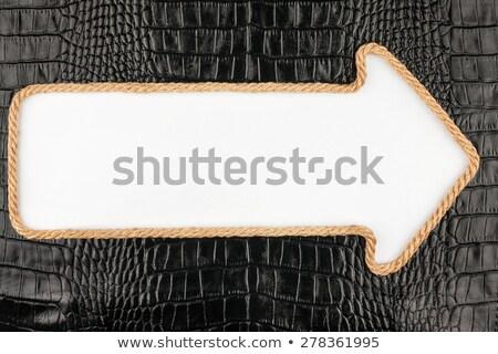 Nyíl kötél hazugságok krokodil bőr hely Stock fotó © alekleks