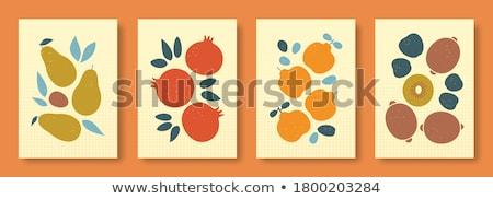 айва · фрукты · деревянный · стол · вязанье · серый - Сток-фото © hansgeel