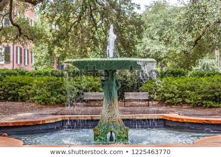Ijzer fontein savanne vierkante boom natuur Stockfoto © meinzahn