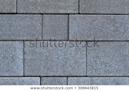 Decorative concrete slabs pavers Stock photo © stevanovicigor