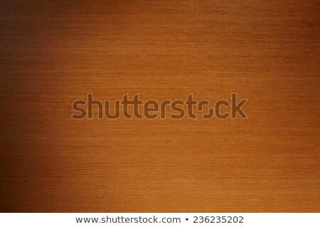Pénzügy fa asztal kéz számológép szó iroda Stock fotó © fuzzbones0