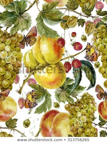 sem · costura · frutas · papel · verão · grupo - foto stock © balasoiu
