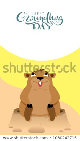 Happy Groundhog Day lettering text greeting card. Funny marmot sits and looks up Stock photo © orensila