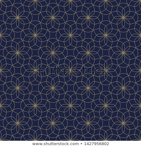 Geométrico étnicas simétrico líneas vector resumen Foto stock © Samolevsky