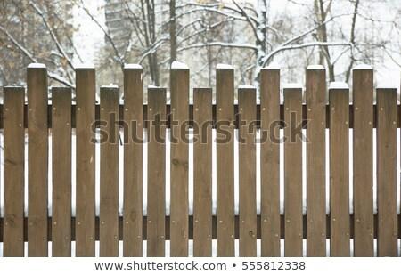 śniegu pokryty ogrodzenia samotny zimą Zdjęcia stock © Kidza