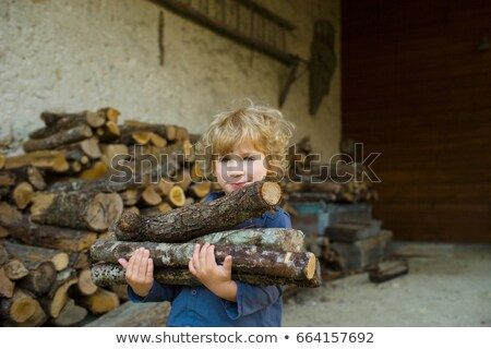 A boy carrying logs Stock photo © IS2