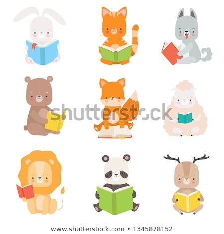 Macska kabala olvas könyv illusztráció aranyos Stock fotó © lenm