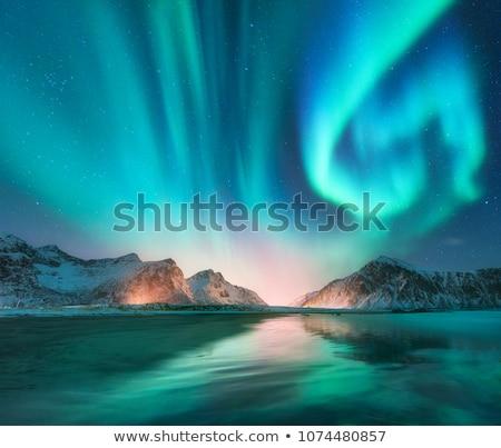 rzeki · scena · noc · ilustracja · wody · lasu - zdjęcia stock © bluering