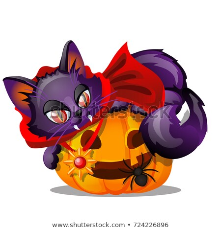 Purple cat with bared fang lying on Jack-o-lantern, black spider isolated on white background. Sketc Stock photo © Lady-Luck