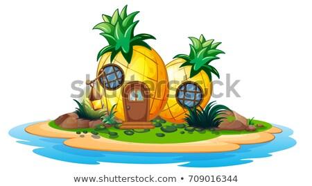 Ananász ház sziget illusztráció tájkép tenger Stock fotó © colematt