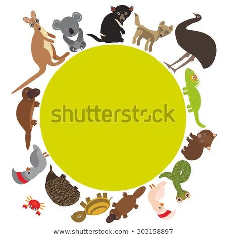 Szett kenguru természet keret illusztráció levél Stock fotó © bluering