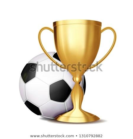 Fútbol adjudicación vector fútbol pelota dorado Foto stock © pikepicture