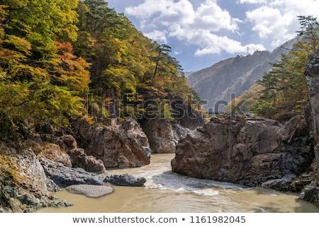 Japonia tęczy wodospad niebo lasu krajobraz Zdjęcia stock © vichie81