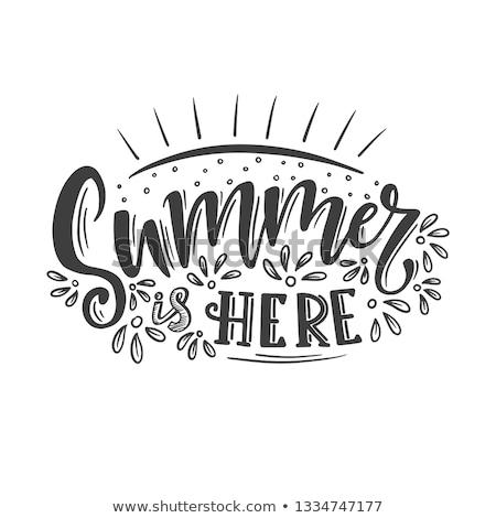 Nyár itt szöveg napszemüveg égbolt felirat Stock fotó © colematt