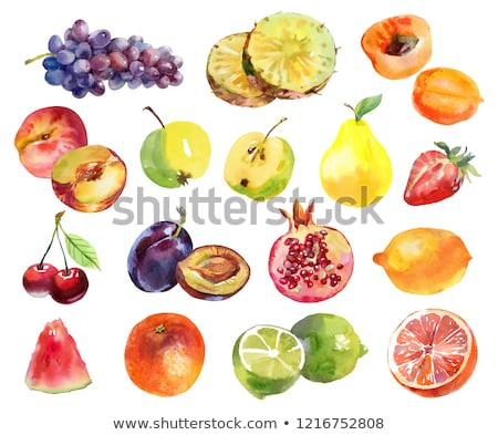 apricot peach and strawberry on orange background watercolor illustration stock photo © conceptcafe