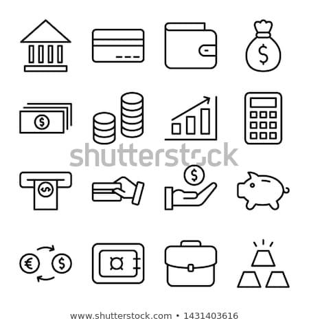 Banku konto karty kredytowej bezpieczeństwa finansowych oszczędności Zdjęcia stock © RAStudio