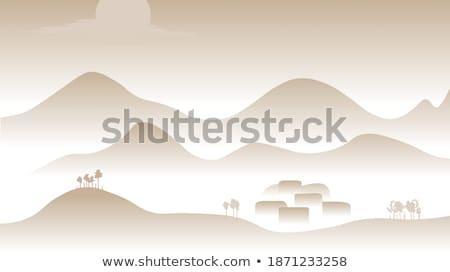 Deserto scenico panorama viaggio sabbia rock Foto d'archivio © lovleah