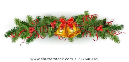 Fagyöngy fenyőfa ágak szalag íj szett Stock fotó © robuart