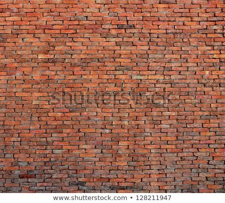 mason leveling brick wall stock photo © photography33
