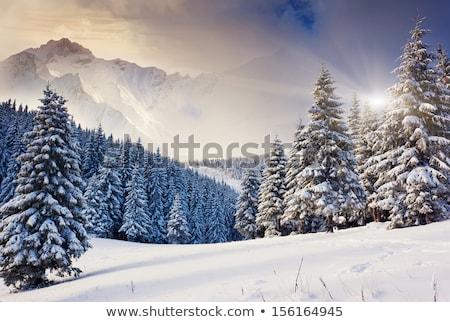 霜 山 冬 青空 空 自然 ストックフォト © bbbar