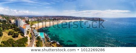 bondi panorama stock photo © photohome