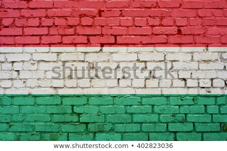 Flag of Hungary on brick wall Stock photo © creisinger