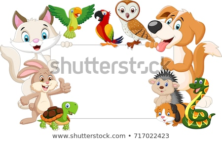 animal cartoon with blank sign stock photo © dagadu