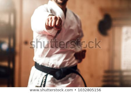 Aikido man jonge zwaard buitenshuis sport Stockfoto © zittto