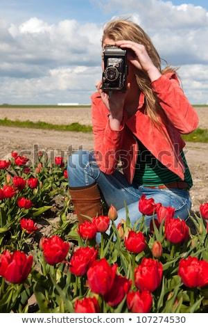 女性 · 写真 · 花 · 花 · 手 - ストックフォト © ivonnewierink