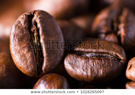 Grains de café faible horizontal brun Photo stock © stokkete