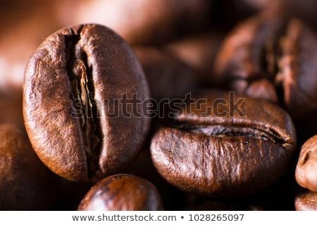 Koffiebonen laag horizontaal bruin Stockfoto © stokkete