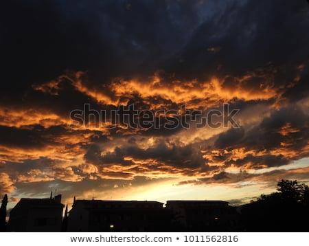 Ardiente fondo naturaleza humo web rojo Foto stock © Ecelop
