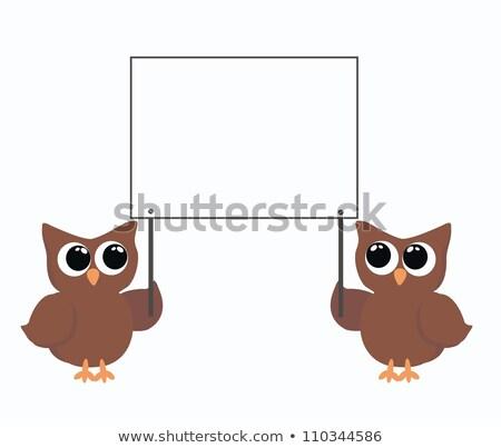 dois · corujas · abstrato · projeto - foto stock © popocorn