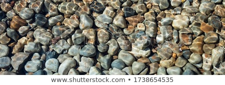 pebbles under water Stock photo © Discovod