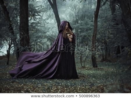Belle sorcière pourpre gothique halloween costume Photo stock © Elisanth