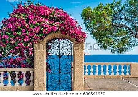 Mediterrán kapualj fehér kék piros virágok épület Stock fotó © Anterovium