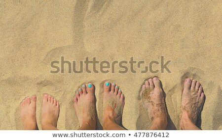 feet of a family in the fine sand of the beached, grouped in a c Stock photo © meinzahn