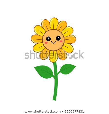 подсолнечника · Cartoon · логотип · зеленый · венок · изолированный - Сток-фото © Miloushek