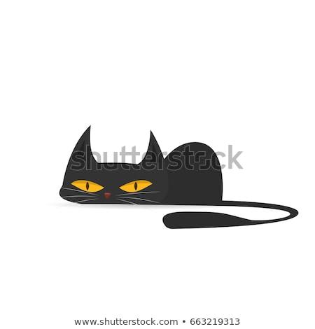 Cute · прелестный · котенка · ванна · расслабляющая · смешные - Сток-фото © hasloo