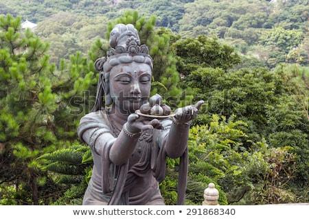 buddhistic statue praising and making offerings to the tian tan buddha hong kong lantau stock photo © nejron