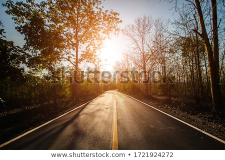 road at dusk stock photo © joyr