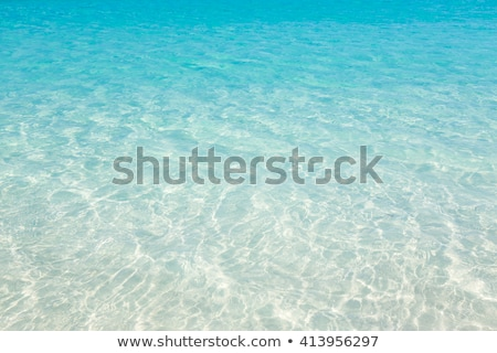Tropical Water Stock photo © THP