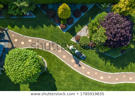 Landschaftsbau Design Garten Felsen solar Lichter Stock foto © THP