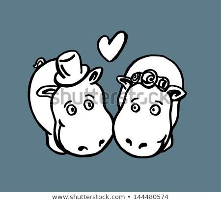 Hippos marriage Stock photo © adrenalina